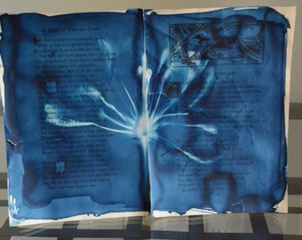 Bozzaris Bloom - Original Cyanotype on Antique Book Pages