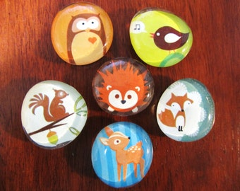 FRIENDLY FOREST FELLOWS Nature Lover Magnets Set of 6 Woodsy Wildlife Animals