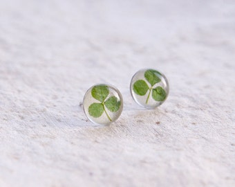Real clover stud earrings - St. Patrick's Day Jewelry - green Trifolium repens leaves