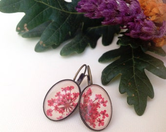 botanical jewelry pink earrings, real flower jewelry, dangle earrings, flower earrings with pressed flowers, nature lover gift, bridesmaids