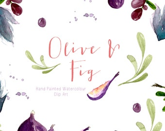 Watercolour Clip Art - Olive and Fig