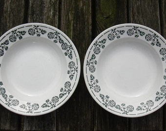 French antique set of 2 plates from Digoin Sarreguemines. Green floral decor. French tableware.