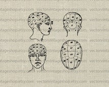 Phrenology Vector Clipart Human Head Anatomy Antique Medical Science Victorian Illustration Occult Instant Download Commercial Use WEB1698J