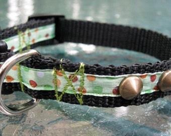 XS Dog Collars