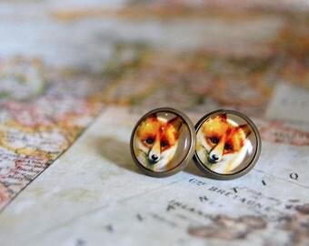 little fox vintage inspired antique brass framed post earrings