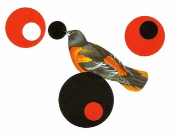 Colorful Geometric Artwork, Original Collage, Circular Art, Colorful Modern Circle Wall Art, Oriole Bird Lover Gift, Circular Artwork