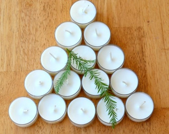 Cinnamon Balsam Tea Light Soy Candles, Gift Set of 18, Clean Burn, Holiday Decor and Scent,  Christmas Scented Candles, Home Fragrance