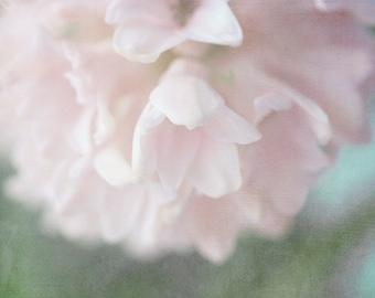 Pink Hyacinth Photograph, Ethereal Flower,  Floral Art Print, Pastel Wall Art, Pink Flower Photography, Bedroom Decor, Zen Art