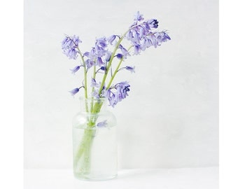 Blue Bells Photograph, Still Life Print, Shabby Chic Home,  Pastel, Blue Flowers, French Country Wall Decor