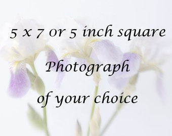 5  inch square or 5 x 7  Print, Photograph of Your Choice
