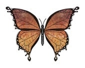 amber duchess, fantasy butterfly art digital illustration print 8X10 inches, copper orange puce coloration
