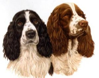 "ENGLISH SPRINGER SPANIEL 2 dogs in Both Colors on One 16 inch Fabric Panel to Sew. Actual Picture is 8"" x 10""on white background."