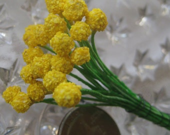 Millinery Flower Stamen Czech Republic Flower Pollen Look Peps 24 Stems  CZ 54