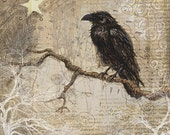 Raven on Branch - signed 8 x 8 inch fine art print