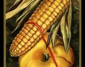 Thanksgiving Corn and Pumpkin Refrigerator Magnet - FREE US SHIPPING
