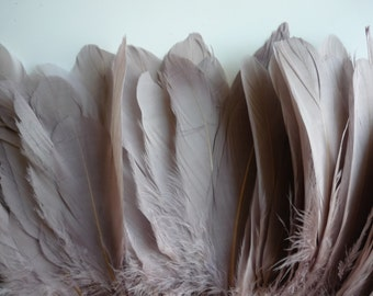 VOGUE GOOSE FEATHER  , Dunn, Dark Blush /  695