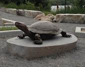 Park sized bronze turtle, 'The sun worshipper'