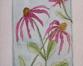 Original Handmade Watercolor Card of Cone Flowers