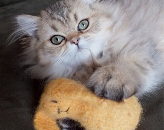 Honey Bunny Cat Toy  - Hand Knit Wool Felted Organic Catnip