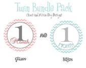 Monthly Boy Girl Twins Milestone Stickers- monthly baby stickers- baby bodysuit sticker- with optional Gerber ONESIES- GRL289 and BOY176