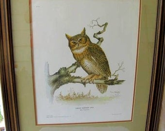 Framed Great Horned Owl Print by Tony Biagi, limited edition signed print - SPRING SALE