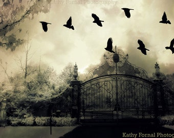 Gothic Surreal Photography, Haunting Surreal Gate With Ravens, Ravens Crows Gate Wall Art Prints, Surreal Gate, Spooky Gate Ravens Art Print
