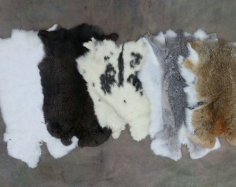 One Average Rabbit Hide - B Quality Assorted Colors. Stock No. BRBT