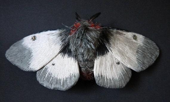 Fabric sculpture -New England Buck moth  textile art