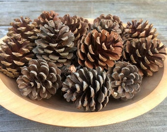 Natural Pine Cones - Rustic Decoration or Craft Supply - Set of 12  Pine Cones - Rustic Wedding Decor - Country Home Decor - Holiday Decor