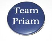 Greek Mythology - Team Priam- Trojan War - The Iliad
