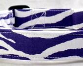 Zazzy Zebra Purple and White Animal Print Dog Collar Stripe