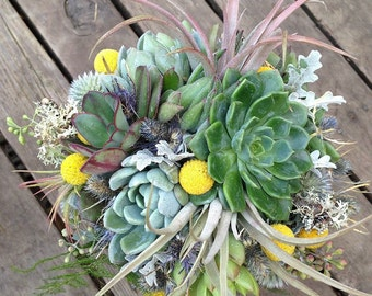 Succulent bridal bouquet with air plants, billy balls and woodland accents