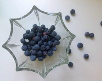 Vintage Westmoreland Glass Bowl - Berry Bowl - Umbrella - Spider Web