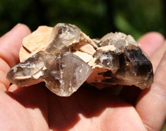 Smokey Quartz Cluster From Colorado Crystal Specimen with Feldspar