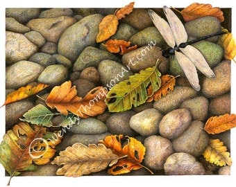 Autumn Leaves Dragonfly art blank note card -  The Orphan, autumn colors, river rocks pebbles stones