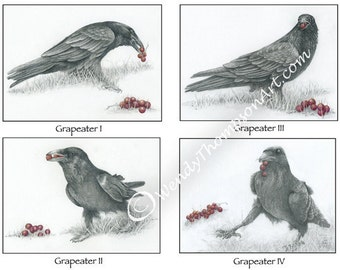 Raven art note card set of four - Original design corvid art, raven feathers whimsy, graphite pencil art, wine grapes