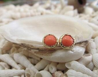 Coral Orange - 14K Yellow Gold Post Earrings