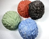 Brain Bombs - bath fizzy, set of 4, smart, intelligent, zombie, living dead, bath bomb, halloween, graduation, school acceptance, psych