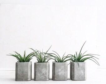 Set of 3 Mini Square Concrete Air Plant Planter, Cement Planter, Wedding Favors, Angular Planter, Geometric, Modern, Vase, Tillandsia