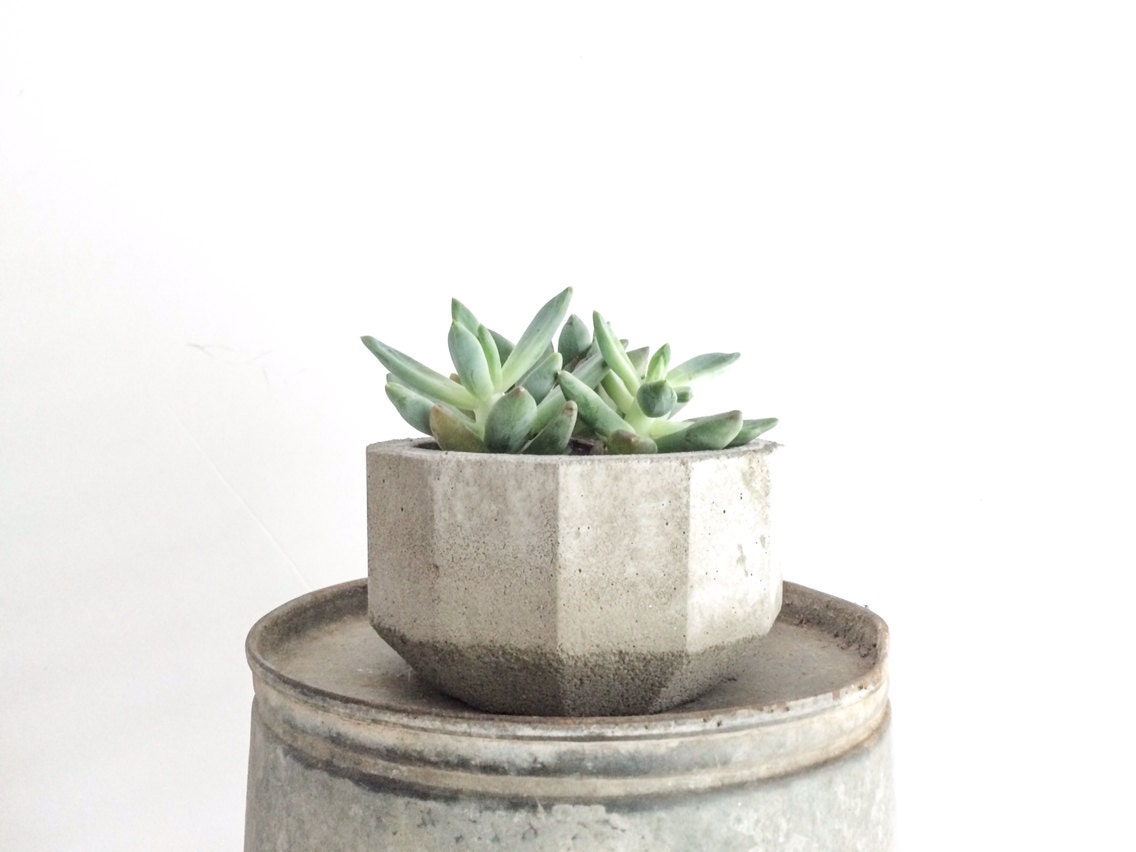 Geometric concrete planter faceted planter succulent Concrete planters