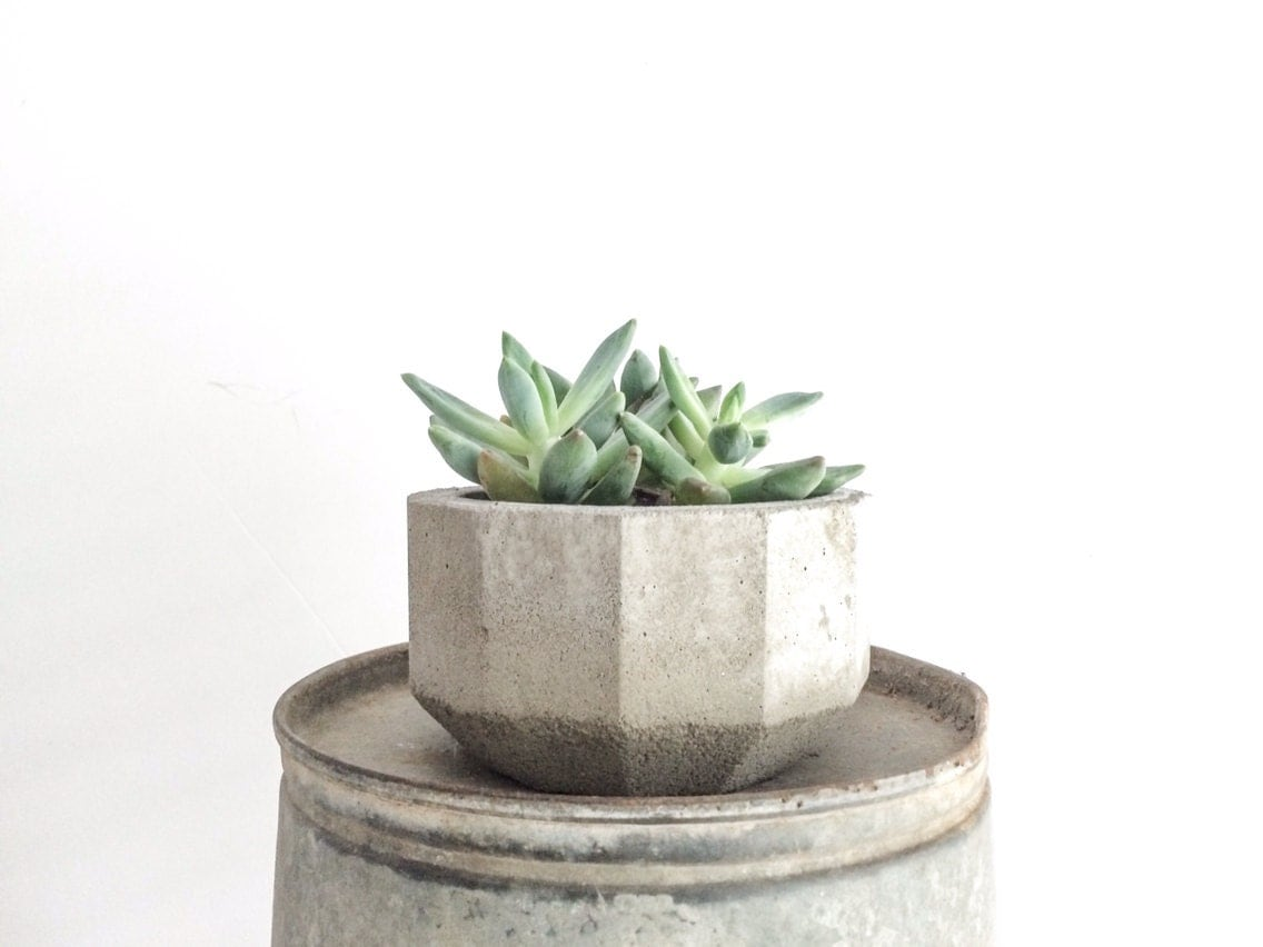 Geometric Concrete Planter Faceted Planter Succulent