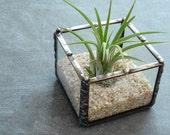 Mini Planter, Desk Accessory, Small Glass Cube