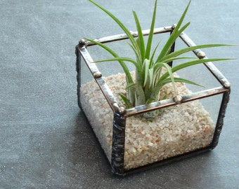 Mini Planter, Desk Accessory, Small Glass Cube