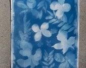 "Original Cyanotype Photogram of Flowers and Leaves - 11.5"" x 15.25"""