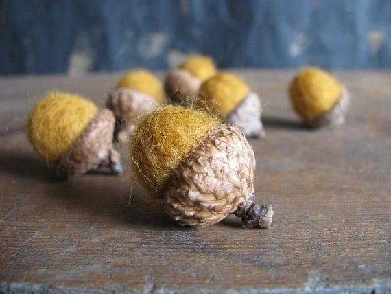 Felted wool acorns, set of 6, Saffron Yellow