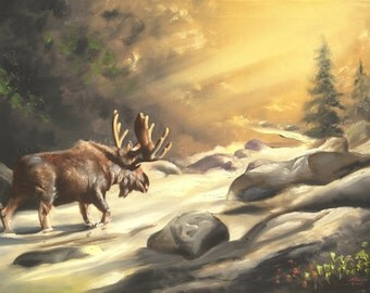 Moose wildlife animal large 24x36 oils on canvas painting by RUSTY RUST / M-322