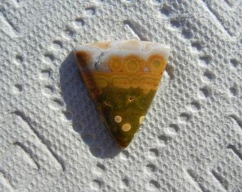 Ocean Jasper Cabochon
