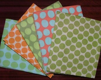 Fat Quarter Bundle of 5 by Amy Butler for Westminster Fibers