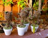 """Crochet Amigurumi Potted Tree - """"Ray Ray Root"""""""