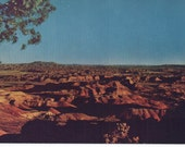 Route 66 Painted Desert Northern Arizona Mike Roberts Card